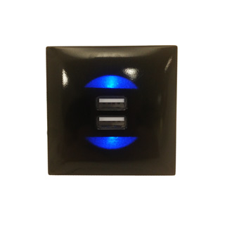 Clockwork Components Dual USB Charging Socket (code: EM-USB03)